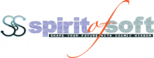 Spirit Of Soft LLC